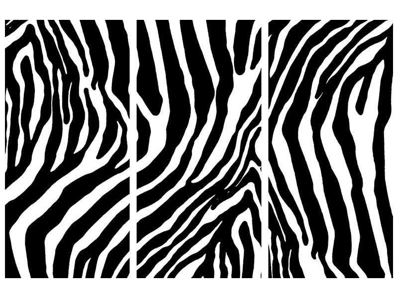 3 Piece Aluminium Print Photo Wallaper Zebra Pattern