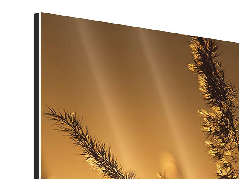 Aluminium Print Romantic Sunset
