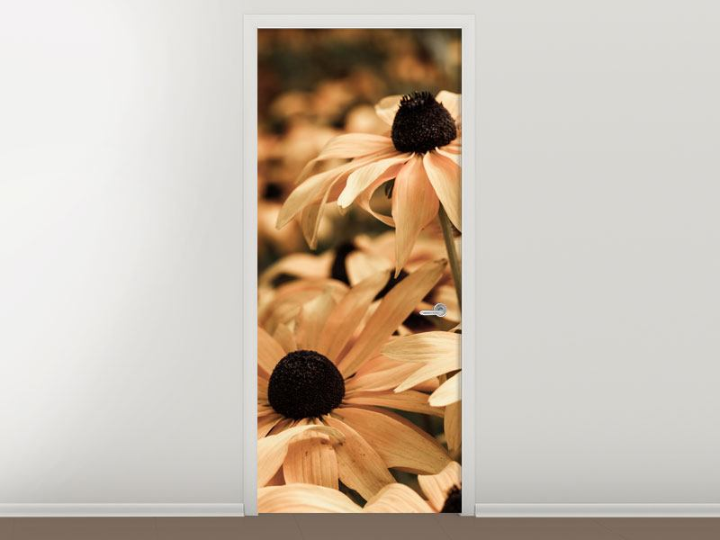 Door Mural Daisies In Sepia