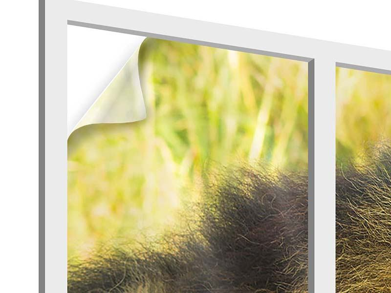 Window Print The King Of Beasts