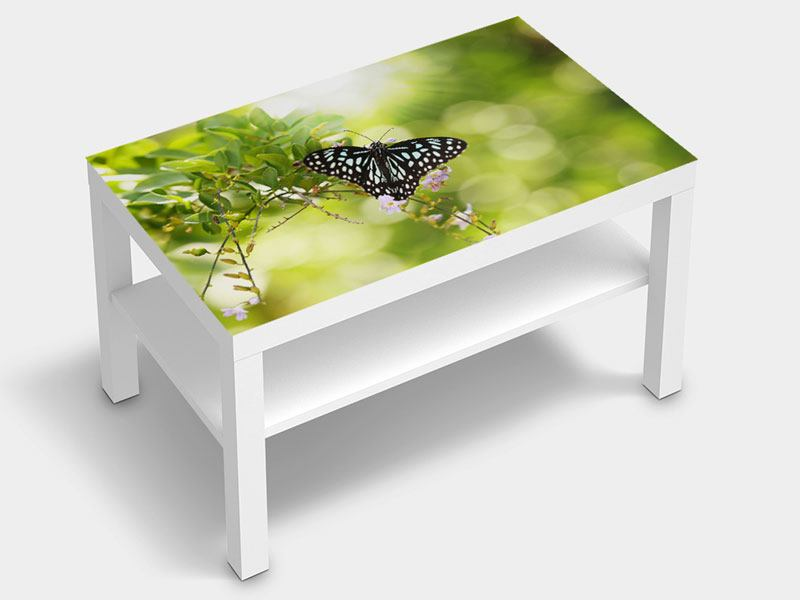 Furniture Foil Papilio Butterfly XXL