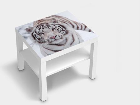 Furniture Foil The King Tiger