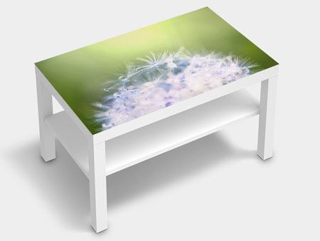 Furniture Foil Dandelion XL In Morning Dew