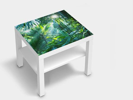 Furniture Foil In Tropical Forest