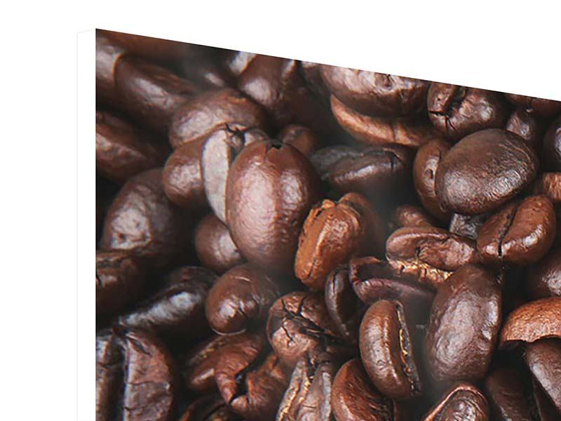Panoramic Forex Print Coffee Beans In XXL