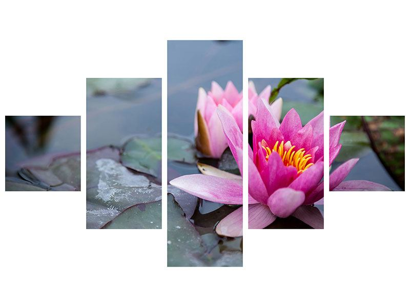 5 Piece Forex Print The Waterlilies Duo