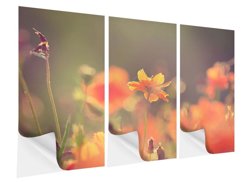 3 Piece Self-Adhesive Poster Flowerage