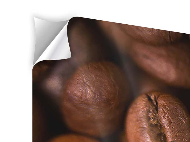 Modern 4 Piece Self-Adhesive Poster Close Up Coffee Beans