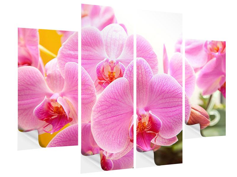 4 Piece Self-Adhesive Poster Royal Orchid