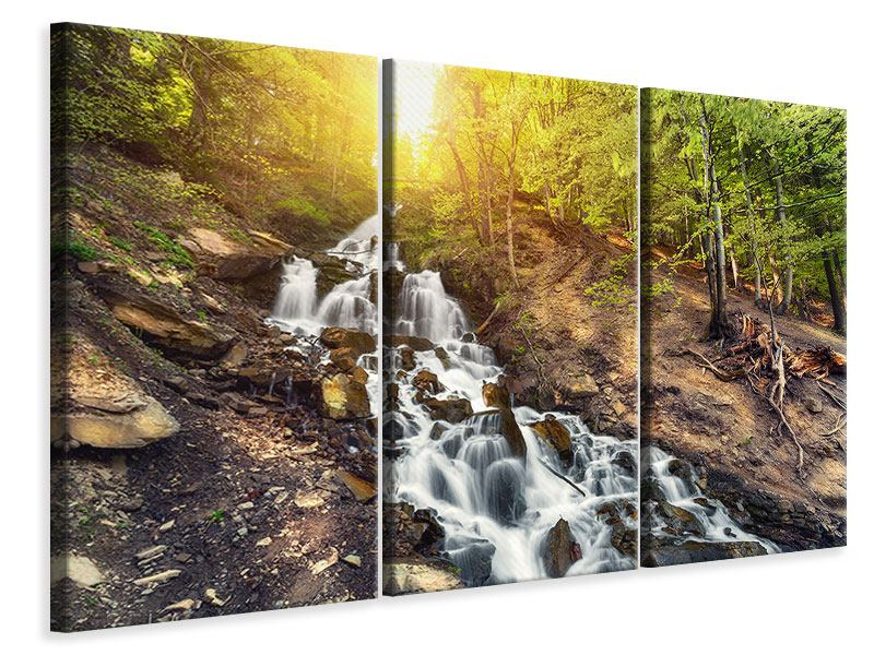 3 Piece Canvas Print Natural Beauty
