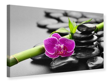 Canvas Print Feng Shui Orchid
