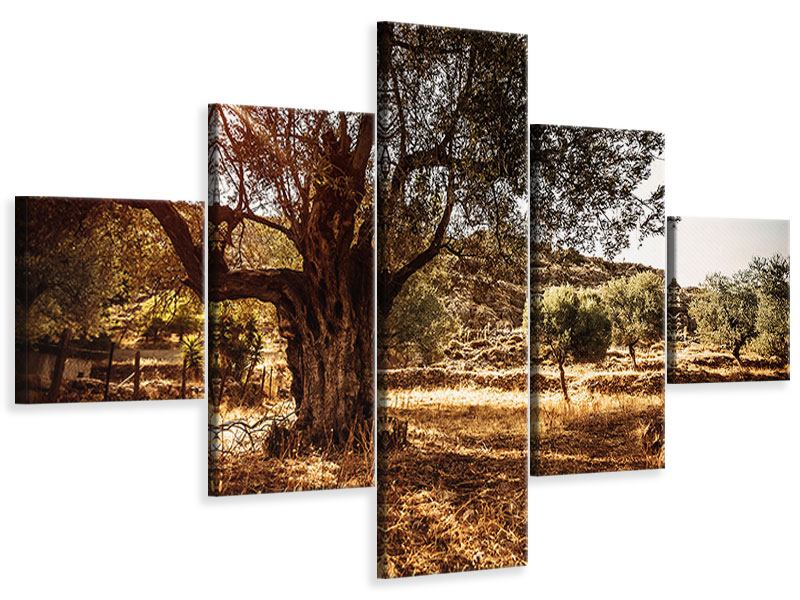 5 Piece Canvas Print Olive Grove