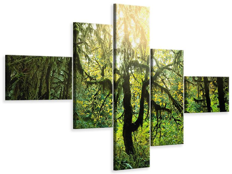 Modern 5 Piece Canvas Print Dreamy Forest
