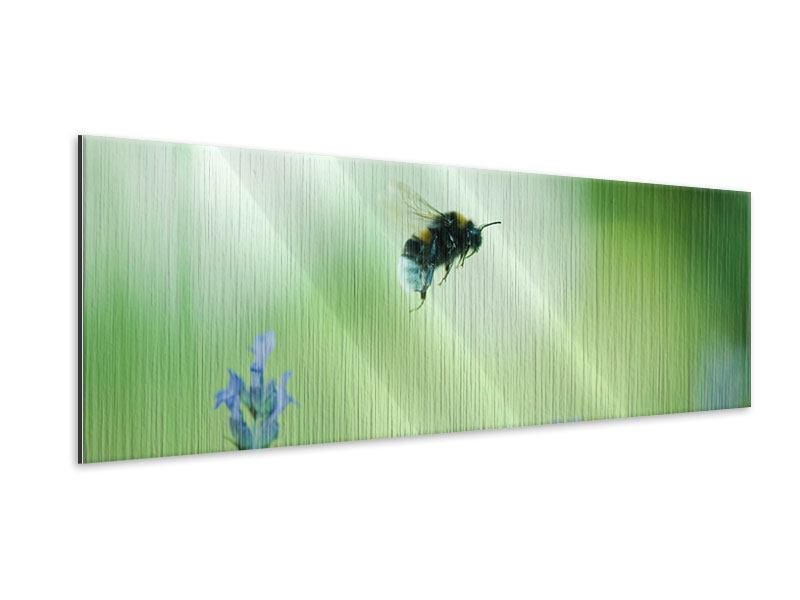 Panoramic Metallic Print The Bee