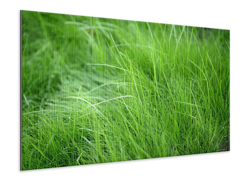 Metallic Print Blades Of Grass