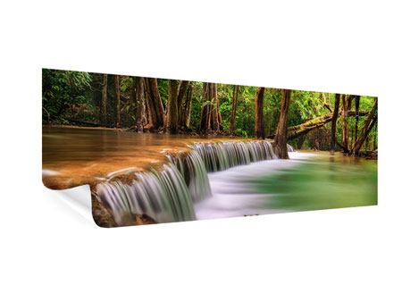 Panoramic Poster Deep Forest