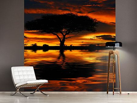 Photo Wallpaper Sunset In Kenya