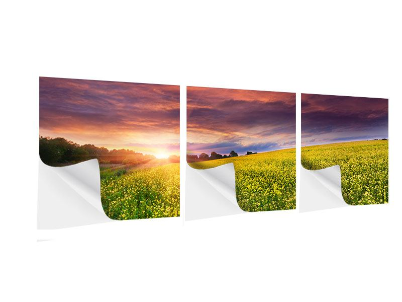 12x18 self adhesive poster board